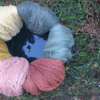 Seentega värvitud lõngad